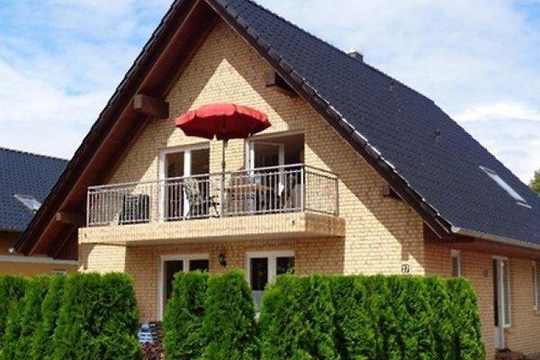 Finnhütte mit Boot und Pferd in Alt Schwerin - immagine 1