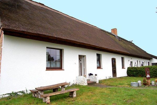 Ferienhaus reetgedeckt  à Klein Bünzow - Image 1