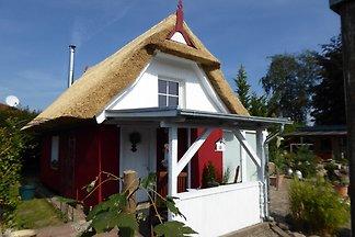 Ferienhaus in Schwaan