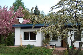 Ferienhaus in Blumenhagen