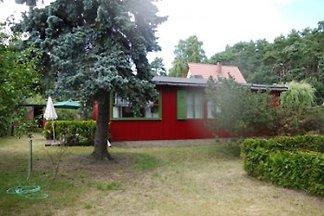 Ferienhaus Stelz