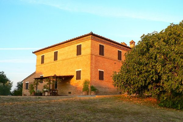 Casa Vacanze San Carlo in Asciano - Bild 1