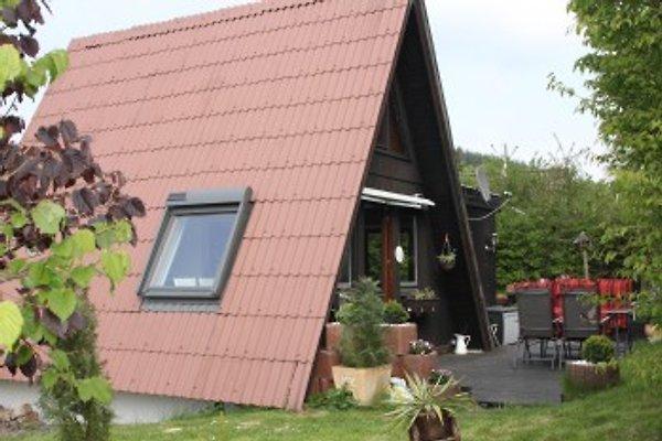 Ferienhaus Liepold à Wolfshagen im Harz - Image 1