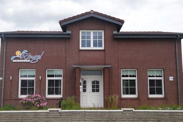 Ferienhaus Ringel**** à Kappeln - Image 1