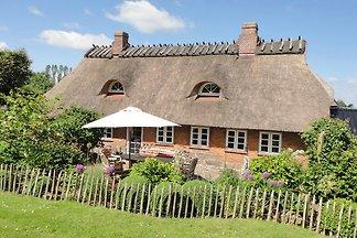 Steernkiekers Hus