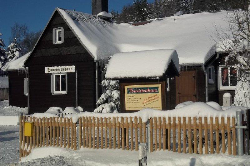 Winter Rehefeld