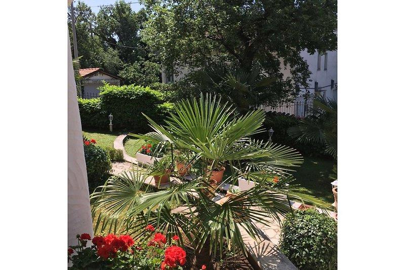 Ausblick auf den Garten der Fewo 1