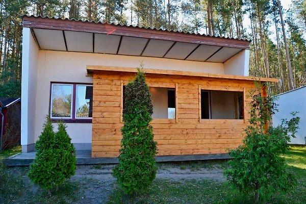 Ferienpark Pelzkuhl Sommerland à Strasen - Image 1