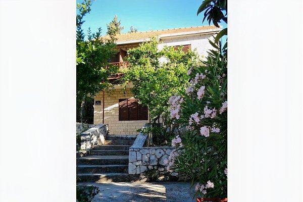 Holiday house - 50m from beach in Okrug Gornji - Bild 1