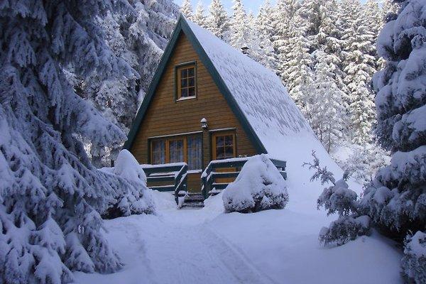 Berggasthof Brand - Finnhütten à Sonneberg - Image 1