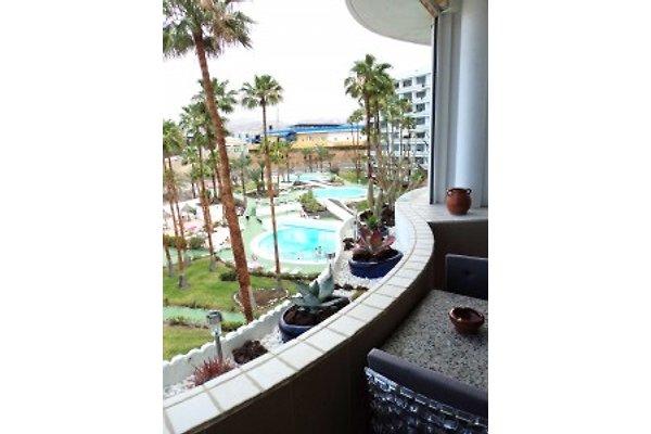 Urlaubswohnung Gran Canaria in Playa del Ingles - Bild 1