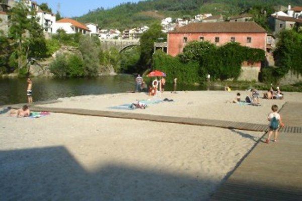 Quinta do Borgonhes in Oliveira do Hospital - Bild 1