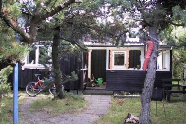 Summer cottage à Halmstad - Image 1