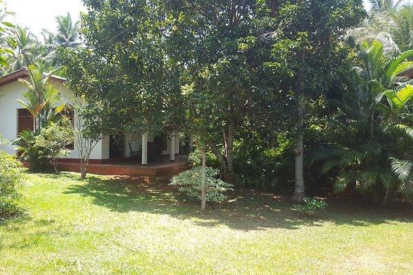 Haus Hainke à Aluthgama - Image 1