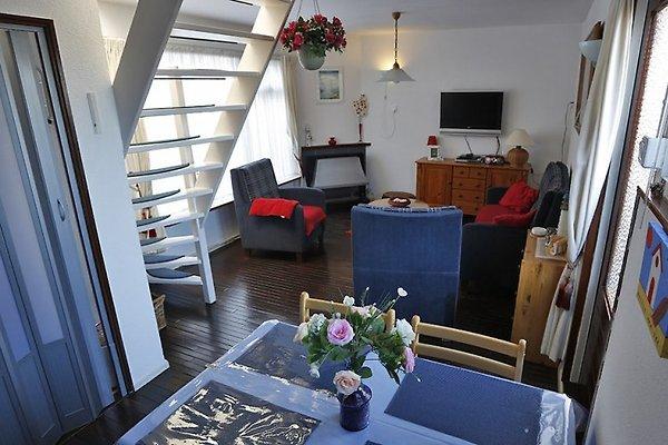 Huisje aan Zee à Noordwijk - Image 1