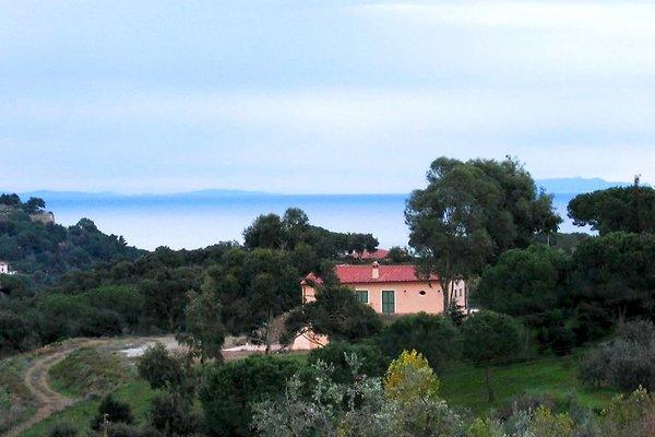 Noisettes, Villa Elba à Porto Azzurro - Image 1