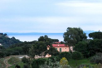 Noisettes, Villa Elba