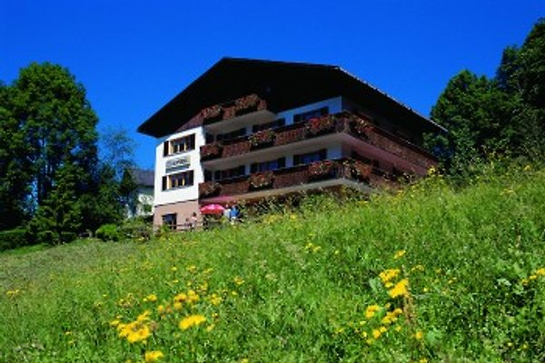 Appartement Sonnberg in Mellau - Bild 1