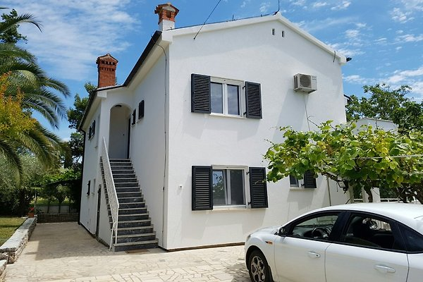 Maison Rosa / Tar-Vabriga à Tar-Vabriga - Image 1