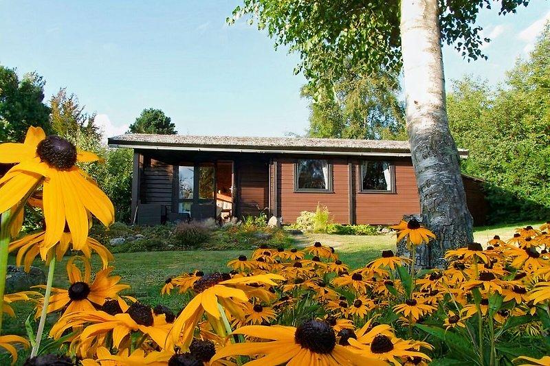 dieSeeSuchtŽ - Lodge am Fjord à Langballig - Image 2