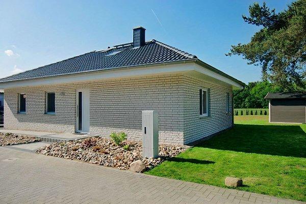 Haus Lachmöwe à Karlshagen - Image 1
