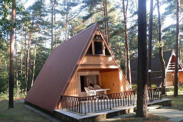 Finnhütte am Silbersee in Friedersdorf - Bild 1