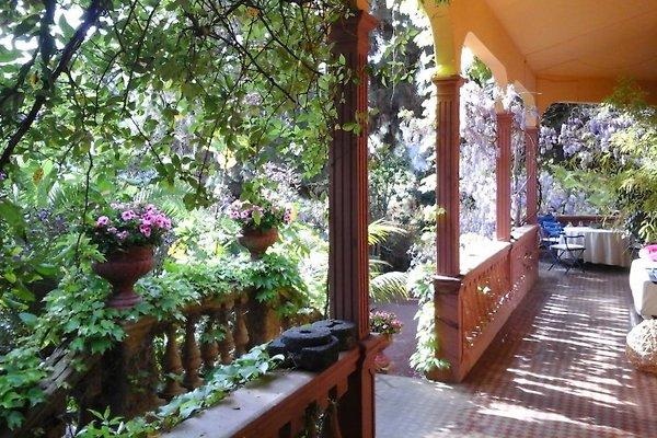 Villa Bambou à Santa Brígida - Image 1