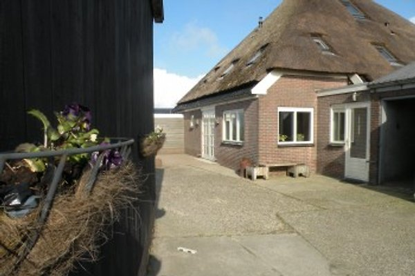 Camperhoeve De Dors à Groet - Image 1