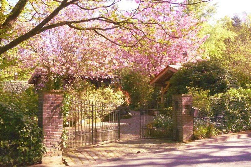 Chalet im Rosengarten