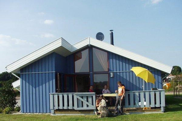 Ferienhaus Pinto Nr.39 in Neuringe - Bild 1