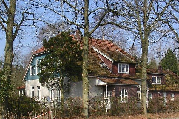 Ferienwohnung Familie Kutscher in Bad Zwischenahn - Bild 1