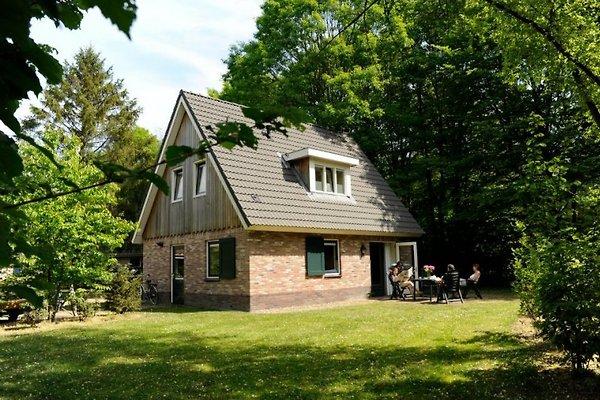 Ferienhaus mit Internet für 6 in Exloo - immagine 1