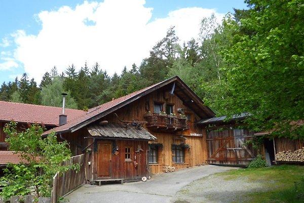 Gruppenunterkunft Bayerischer Wald Ansicht der Museumshütte