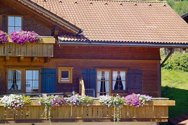 Apartamento en Immenstadt - imágen 1