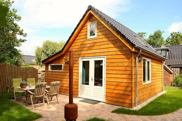 Ecolodge mit Garten, BBQ und Terrasse