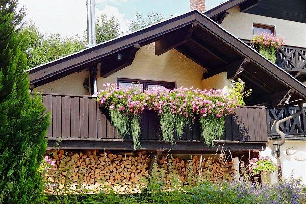 Landhaus Montara Bodenmais in Bodenmais - Bild 1