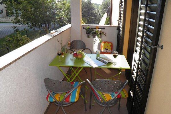 Appartement Suzy, Fazana à Valbandon - Image 1