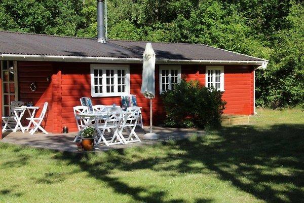 Walthütte in Lyngså - Bild 1