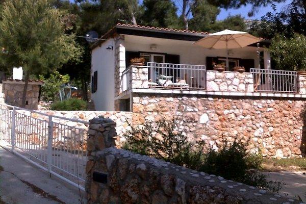 Villa Mala Hvar à Zavala - Image 1