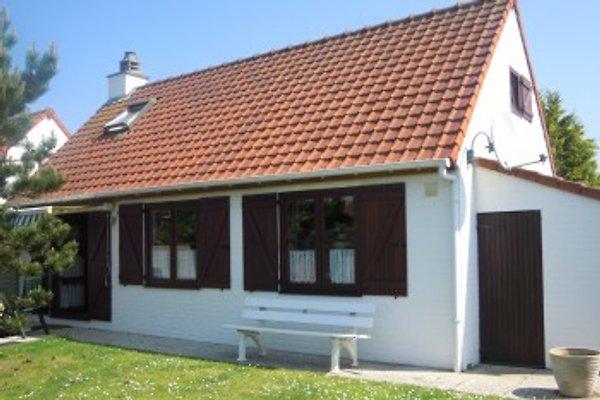 Ferienhaus Belgien Nordsee en Bredene -  1