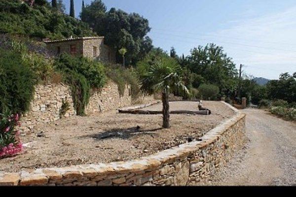 La Cadičre in La Cadière-d'Azur - Bild 1