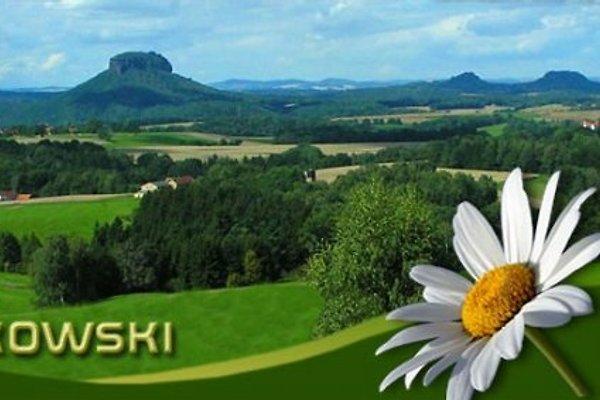 Frau R. Wieckowski