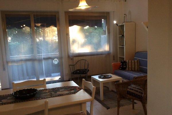 Studio à 100 mètres de la plage à Forte dei Marmi - Image 1