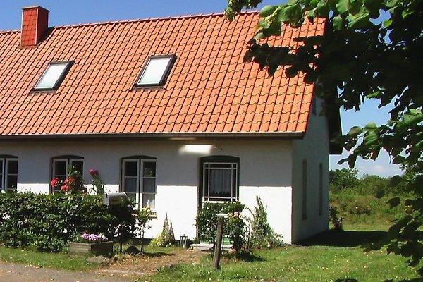 Ferienhaus Zur Schulkoppel à Klappholz - Image 1