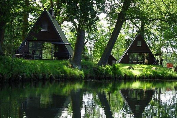 Lutki-Paradies à Burg - Image 1