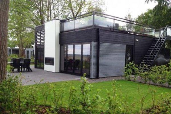 Dieses unter Architektur entworfene, besonders luxuriöse Ferienhaus befindet sich in direkter Strandlage/direkt am Strand vom Veluwemeer (Veluwesee). Das Haus ist ausgestattet für 6 Personen.