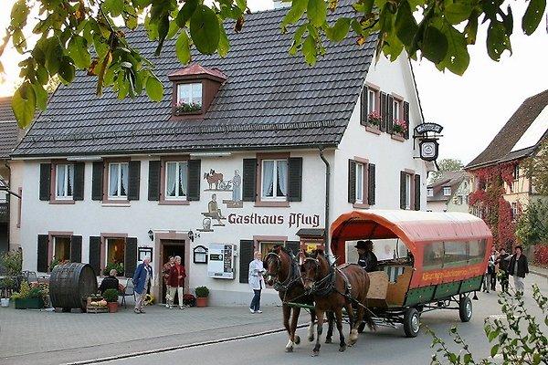 Gasthaus zum Pflug in Kandern in Kandern - immagine 1