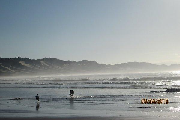 East Beach am Morgen