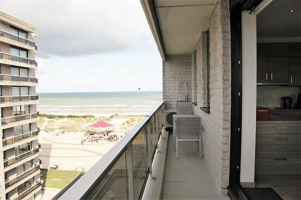 Aussicht von Terrasse 1