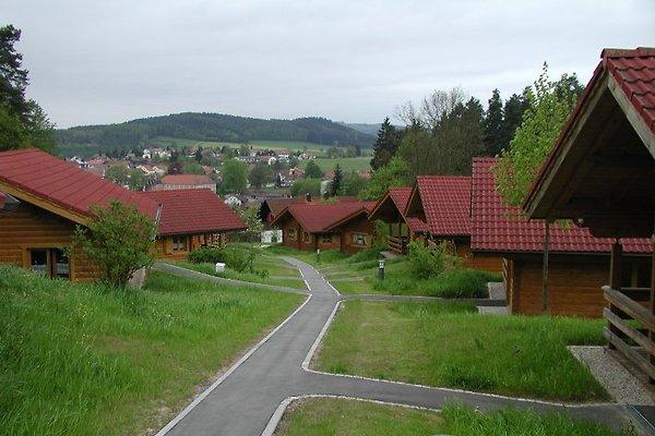 Private huren regensburg